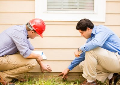 Pest and Building Inspection